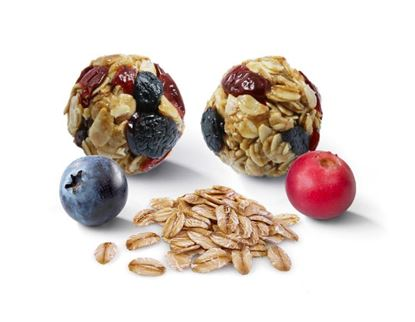 Picture of Blueberry Oat Bites